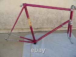 1965 Schwinn Paramount Frameset 25 Inch Campagnolo Record Parts Vintage Bicycle