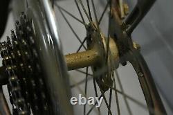 1970 Schwinn Suburban Vintage Cruiser Bike 50cm Small Brown Steel USA Charity