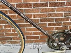 Schwinn Continental Men's Bike 1972 ALL ORIGINAL Chicago USA Vintage