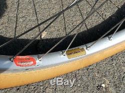 Vintage 1972 Schwinn Paramount Road Bike, All Original, Excellent Condition. 22