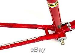 Vintage 1973 Red Schwinn Paramount P13 Road Bike Frame, Original, Campagnolo 22