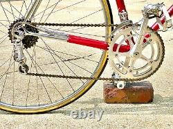 Vintage 1975 Schwinn Paramount P13 Racing Bike 22 Original Campagnolo Equiped