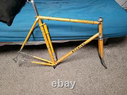 Vintage Schwinn Bicycle Paramount Frame 58cm P10 Campagnolo BB & Headset