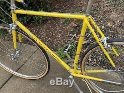 Vintage Schwinn Paramount Road Bike 1974 Nice Condition