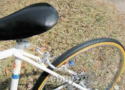 Vtg 1976 Schwinn BICENTENNIAL Varsity Sport 24 Wheel 10Spd Bike + RARE FENDERS
